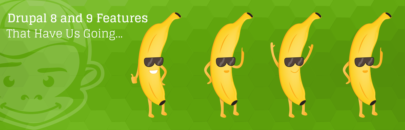 Drupal 8 and 9 Features That Have Us Going Bananas